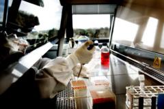 SDUs nye biotekfløj